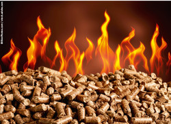 532 Holzpellets im Feuer / Foto: BillionPhotos.com / stock.adobe.com